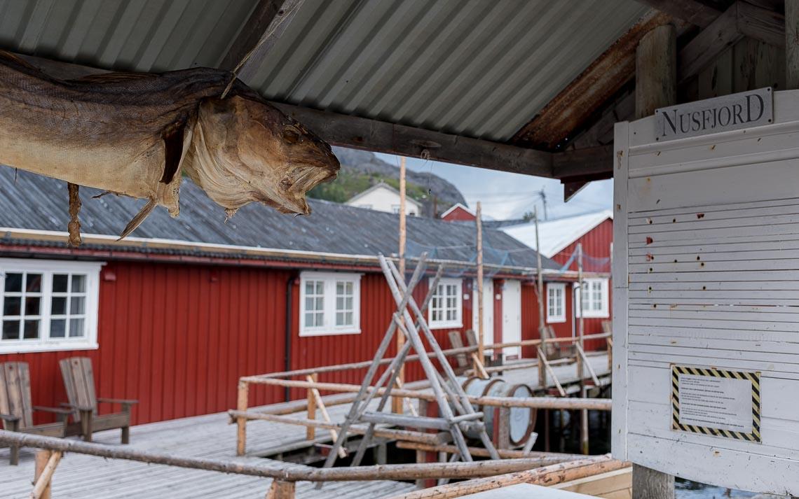 Lofoten Norvegia Nikon School Viaggio Fotografico Workshop Paesaggio Viaggi Fotografici 00012