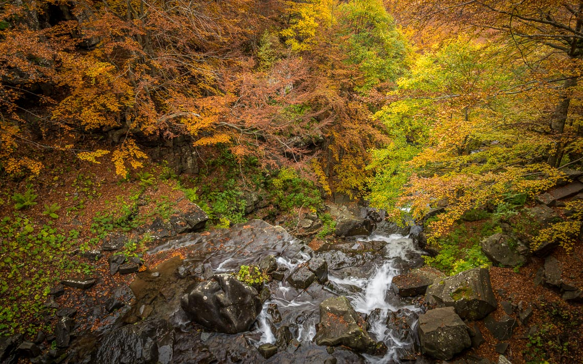 foliage autunno nikon school workshop paesaggio appennino 00002