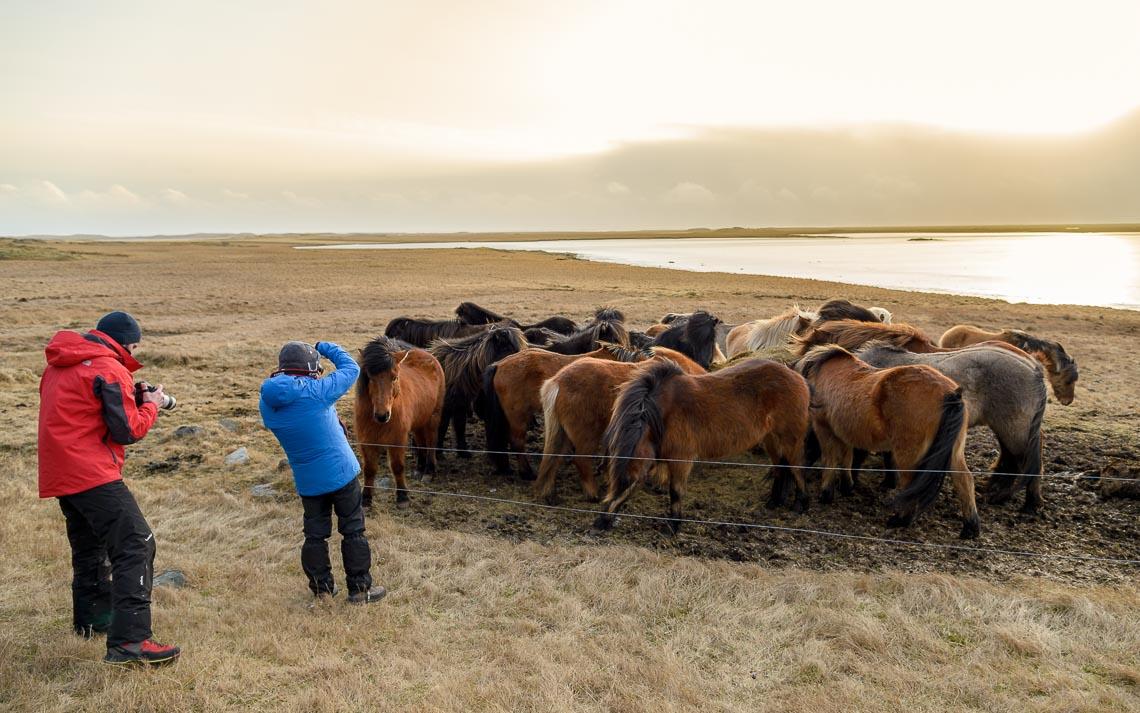 islanda nikon school viaggio fotografico workshop aurora boreale paesaggio viaggi fotografici 00029