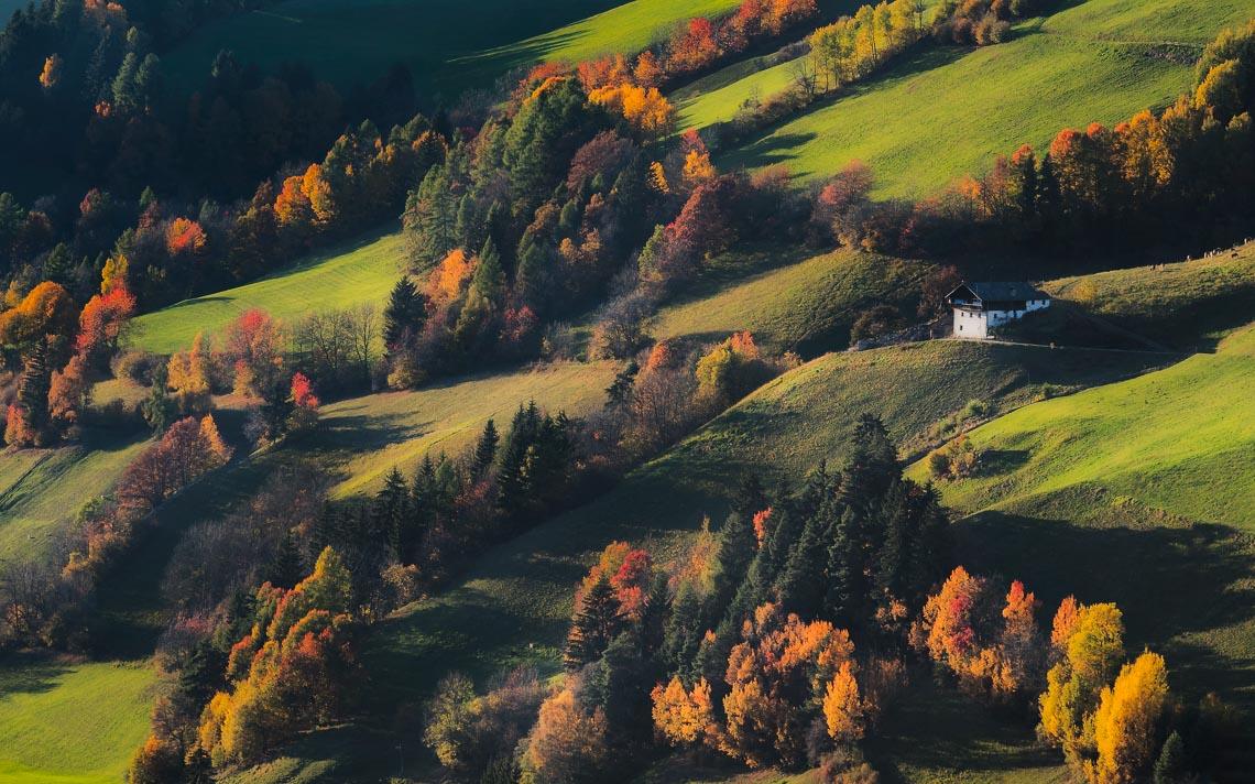 dolomiti foliage autunno nikon school workshop paesaggio notturna via lattea startrail 00030
