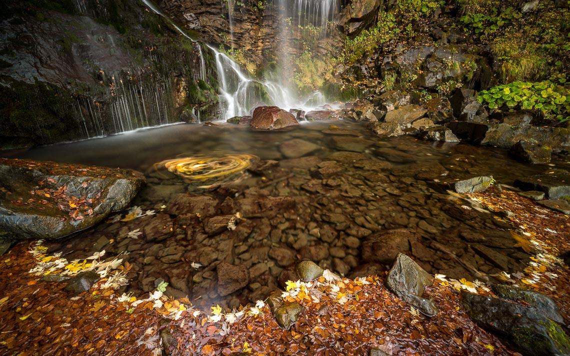foliage autunno nikon school workshop paesaggio appennino 00023