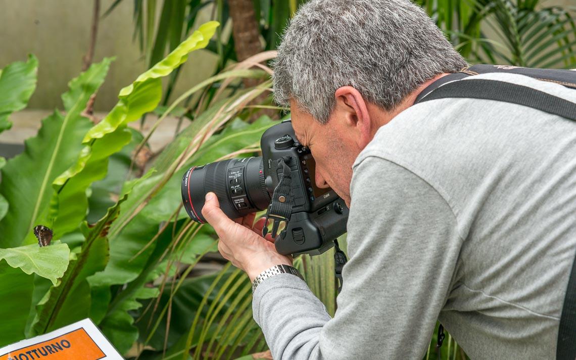 macro nikon school workshop fotografia casa farfalle 00005