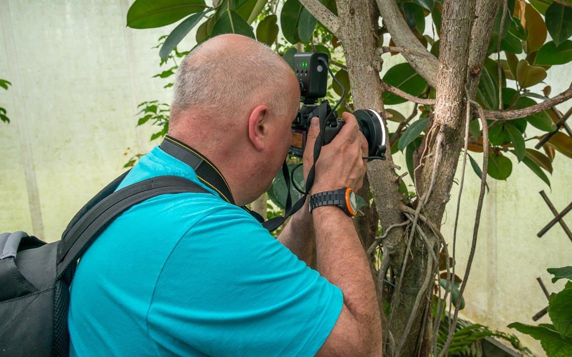 macro nikon school workshop fotografia casa farfalle 00006