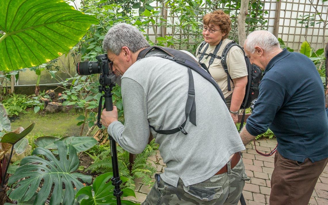macro nikon school workshop fotografia casa farfalle 00009