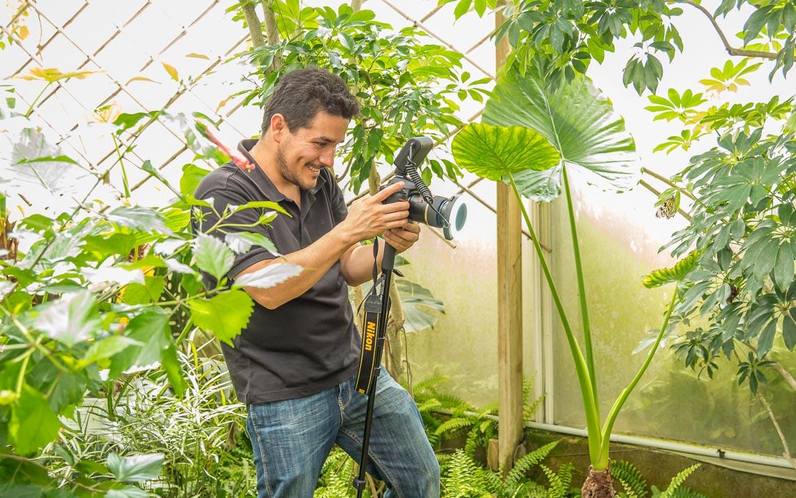 macro nikon school workshop fotografia casa farfalle 00010