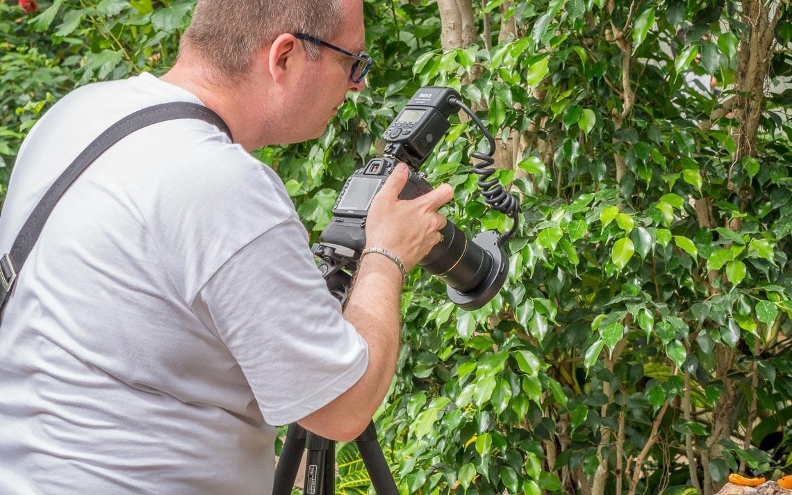 macro nikon school workshop fotografia casa farfalle 00013