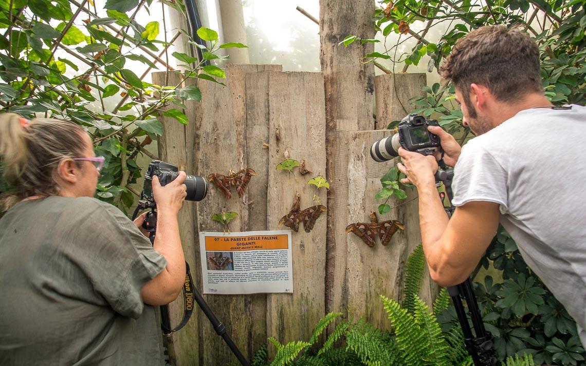 macro nikon school workshop fotografia casa farfalle 00024