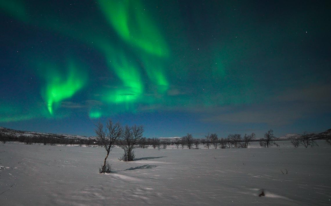Lapponia Finlandia Svezia Nikon School Viaggio Fotografico Workshop Aurora Boreale Paesaggio Viaggi Fotografici 00009
