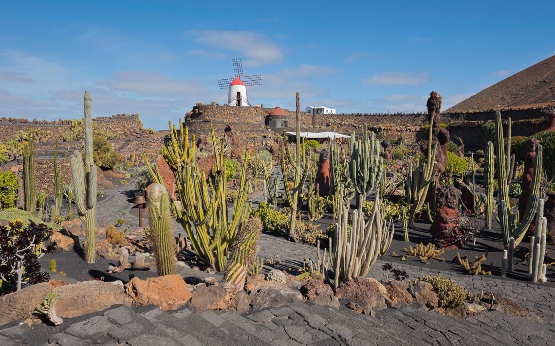 Lanzarote Canarie Nikon School Viaggio Fotografico Workshop Paesaggio Viaggi Fotografici 00001