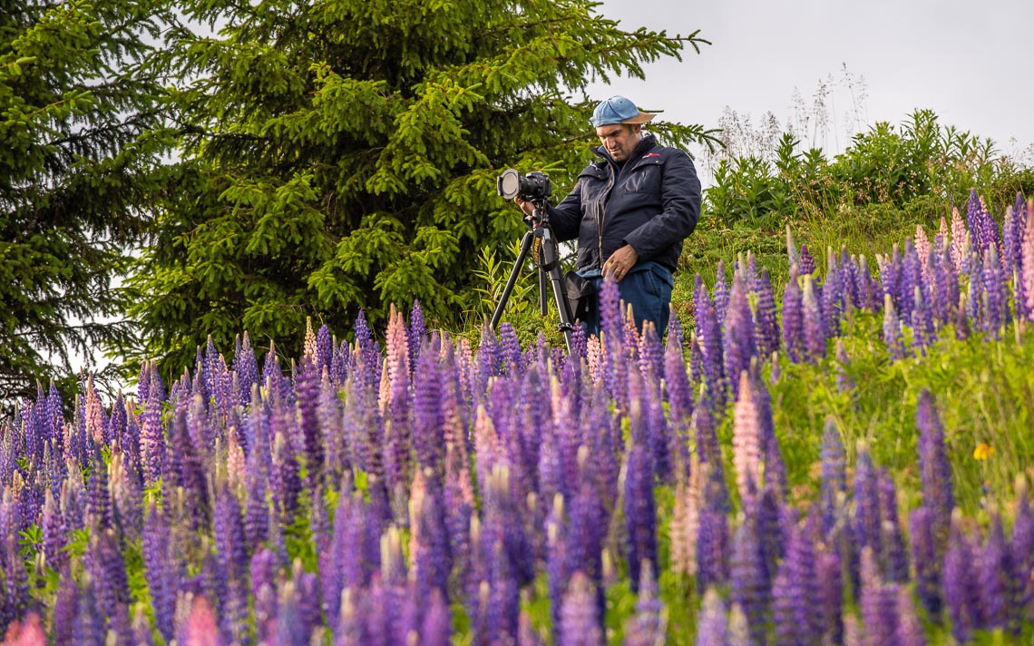 Dolomiti Nikon School Workshop Paesaggio Alpe Siusi Seceda 00009