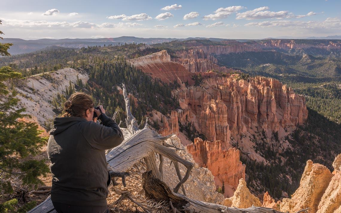 Usa Stati Uniti Nikon School Viaggio Fotografico Workshop Parchi Ovest 00012