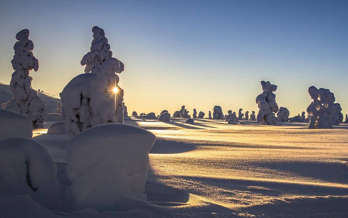 Lapponia Finlandia Svezia Nikon School Viaggio Fotografico Workshop Aurora Boreale Paesaggio Viaggi Fotografici 00040
