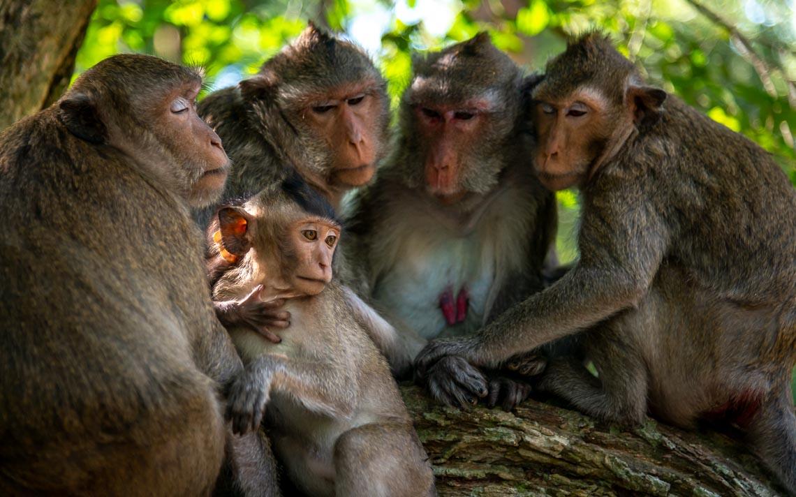Cambogia Nikon School Viaggio Fotografico Workshop Paesaggio Viaggi Fotografici Reportage Travel00010