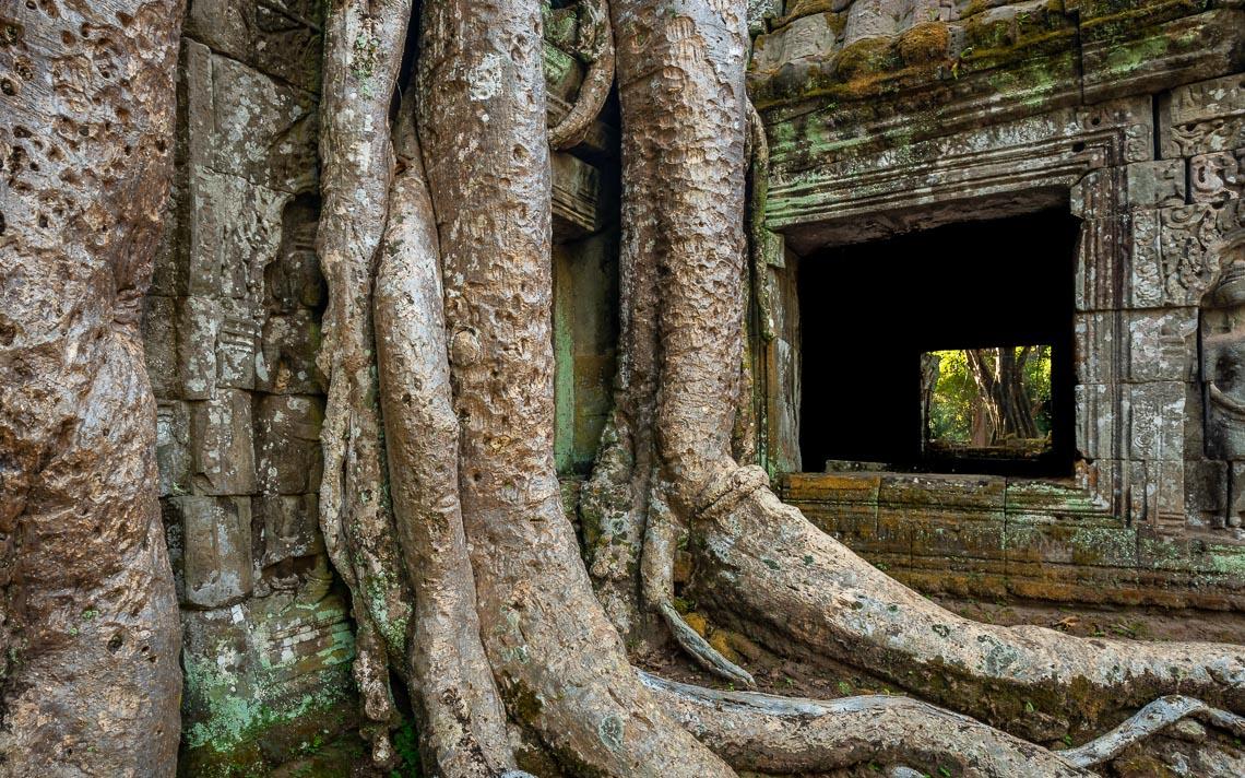Cambogia Nikon School Viaggio Fotografico Workshop Paesaggio Viaggi Fotografici Reportage Travel00016