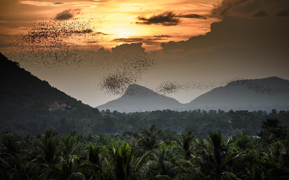 Cambogia Nikon School Viaggio Fotografico Workshop Paesaggio Viaggi Fotografici Reportage Travel00023