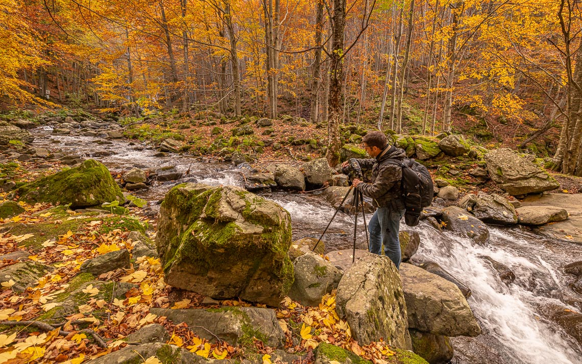 Foliage Autunno Nikon School Workshop Paesaggio Appennino 00029