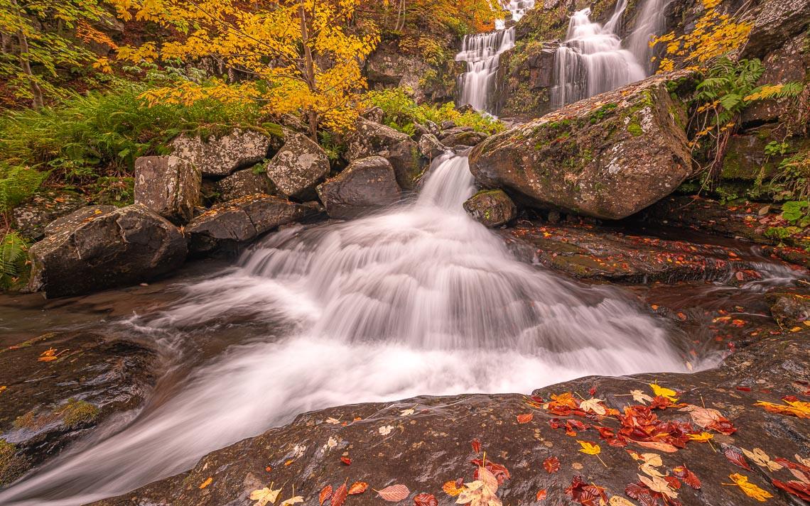 Foliage Autunno Nikon School Workshop Paesaggio Appennino 00042