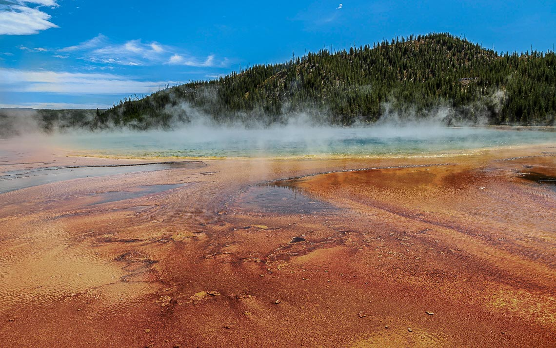 Steam Rises From The Grand Prismatic Spring In Yellowstone Natio