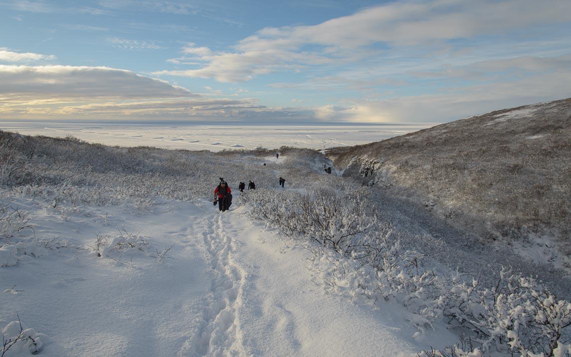 Islanda Nikon School Viaggio Fotografico Workshop Aurora Boreale Paesaggio Viaggi Fotografici 00106