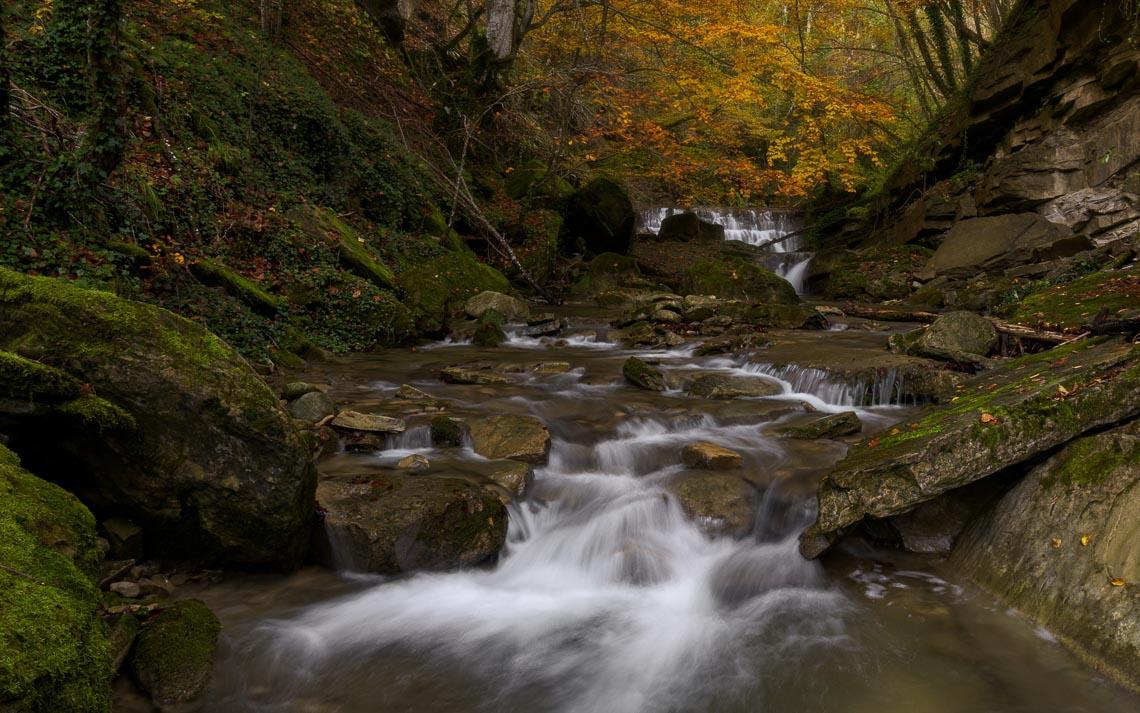 Foliage Autunno Nikon School Workshop Paesaggio Appennino 00010