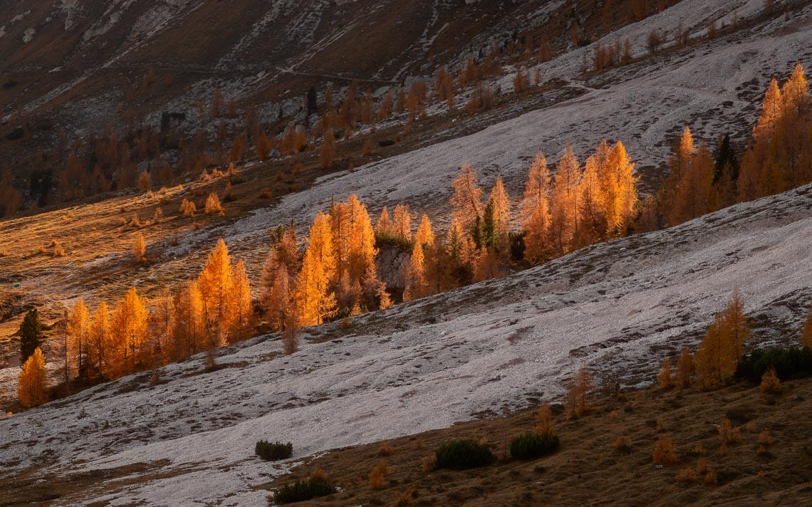 Dolomiti Foliage Autunno Nikon School Workshop Paesaggio Notturna Via Lattea Startrail 00002