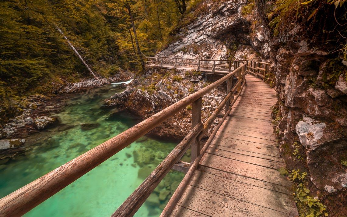 Slovenia Bled Foliage Autunno Viaggio Fotografico Nikon School Workshop Paesaggio Viaggi Fotografici 00013