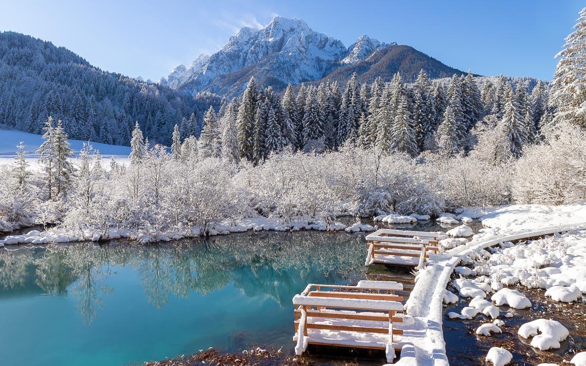 Zelenci Springs Nature Reserve Near Kranjska Gora, Slovenia In W