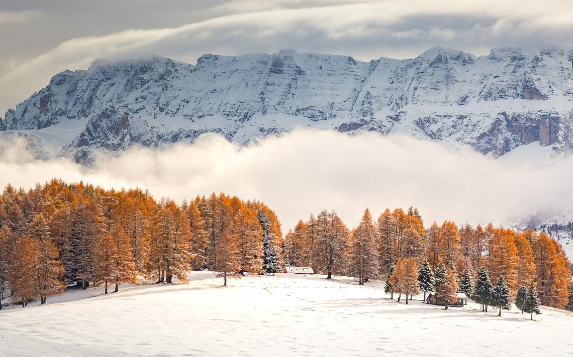 Dolomiti Alpe Siusi Inverno Nikon School Workshop Paesaggio Notturna Via Lattea Startrail 00001