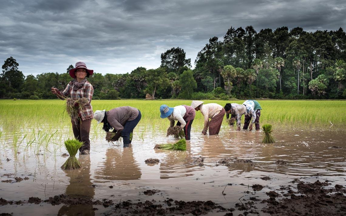 Cambogia Nikon School Viaggio Fotografico Workshop Paesaggio Viaggi Fotografici Reportage Travel 00019