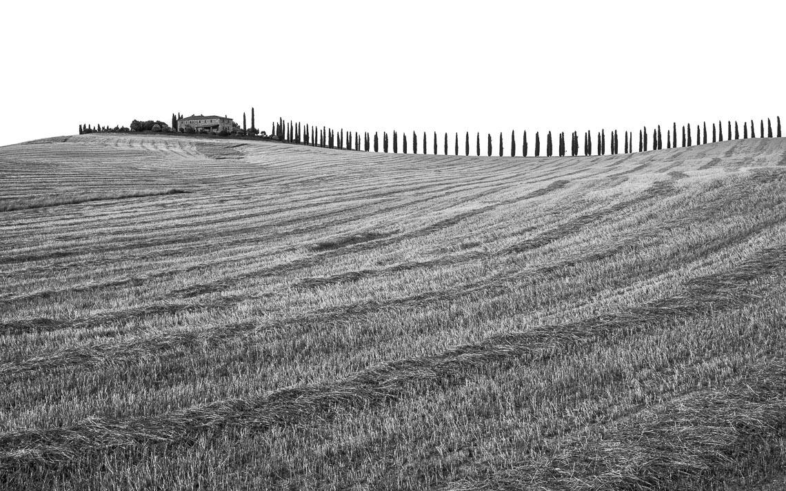 Val Orcia Toscana Nikon School Workshop Paesaggio Notturna Via Lattea Startrail 00008