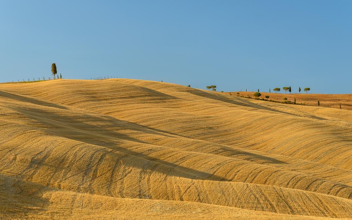 Val Orcia Toscana Nikon School Workshop Paesaggio Notturna Via Lattea Startrail 00013