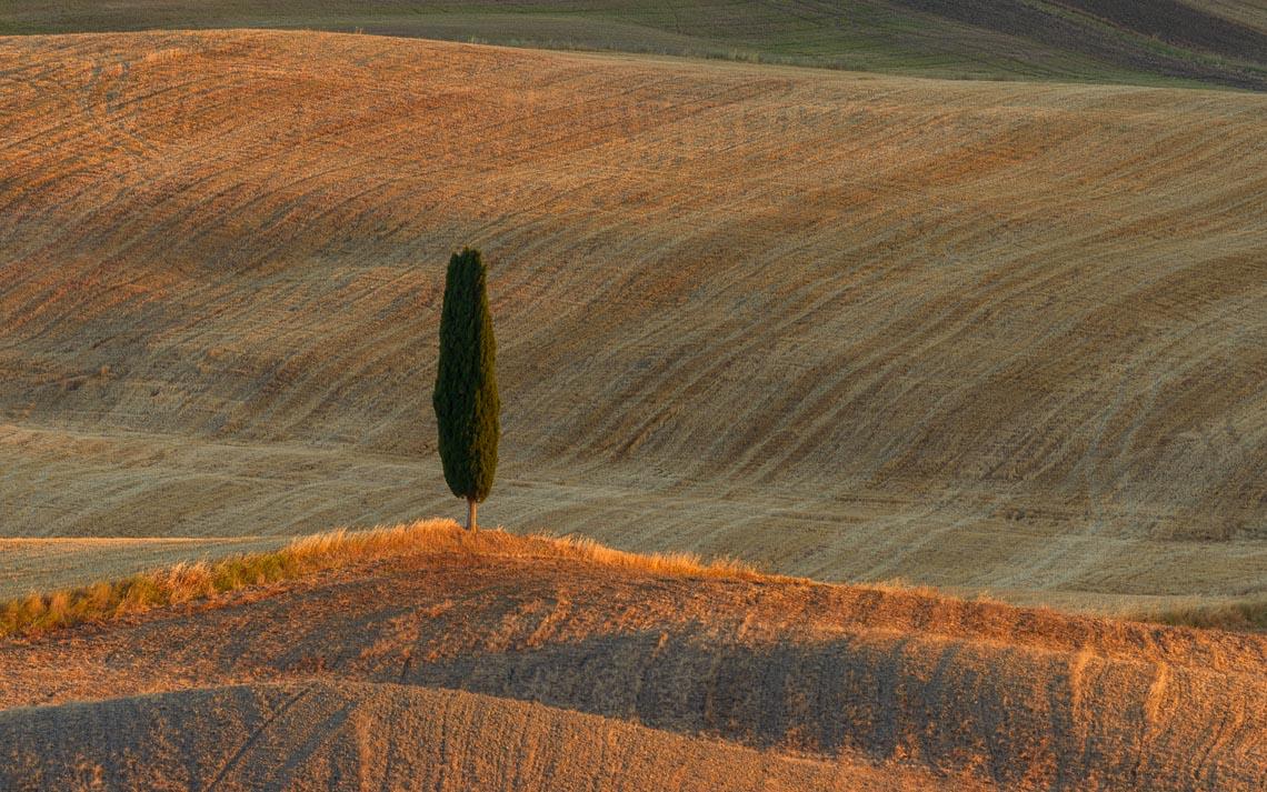 Val Orcia Toscana Nikon School Workshop Paesaggio Notturna Via Lattea Startrail 00027