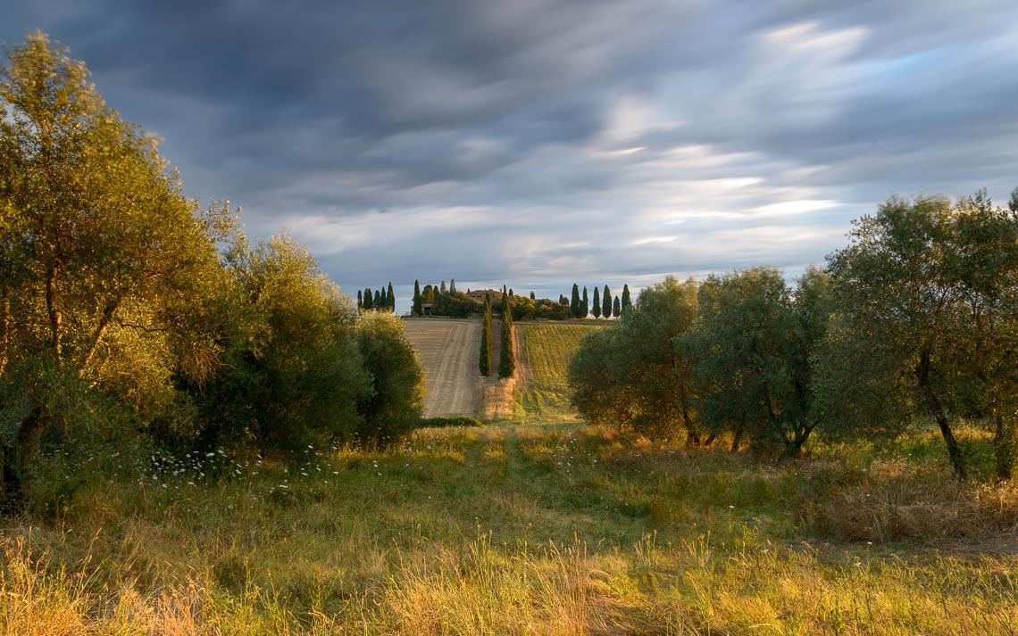 Val Orcia Toscana Nikon School Workshop Paesaggio Notturna Via Lattea Startrail 00028
