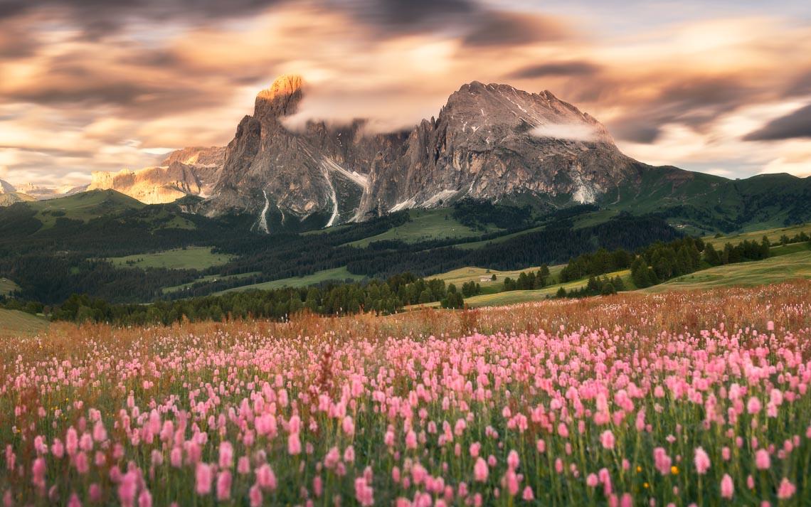Dolomiti Nikon School Workshop Paesaggio Alpe Siusi Seceda 00025