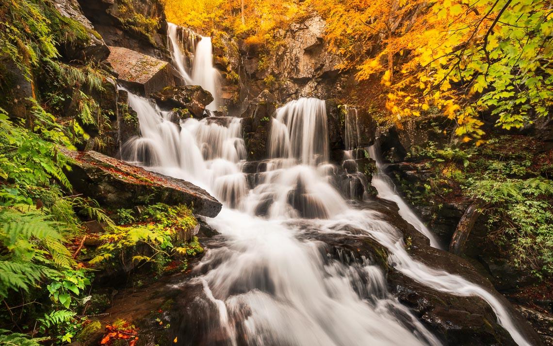 Foliage Autunno Nikon School Workshop Paesaggio Appennino 00048